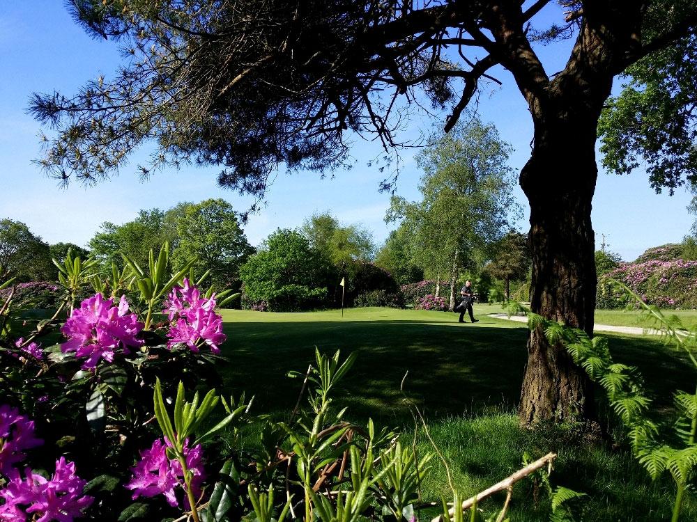 Dorset-Golf-Course-1